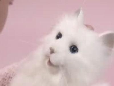 Улыбающийся котенок Yume Neko. робот