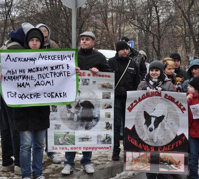 Около сотни дончан приняли участие в акции