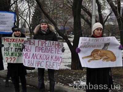 """Дончане требуют от мэра """"собачьи деньги"""", а школьники отдают псам свои"""