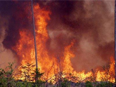 За сутки площадь пожаров в Сибири увеличилась вдвое