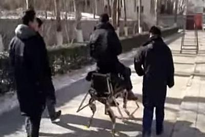 """В Китае испытали """"роболошадь"""" (ВИДЕО)"""