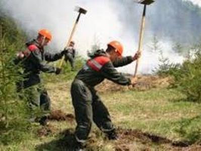 В России выгорело более тысячи гектаров тундры