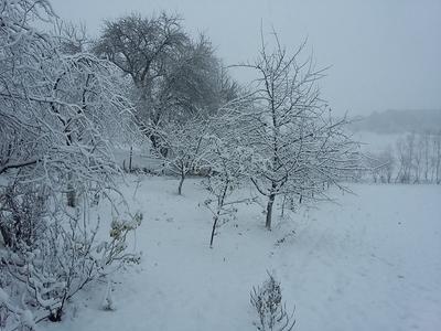 Украину уже 14 ноября покинет циклон, принесший обильные снегопады