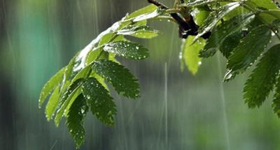 Гидрометцентр: на Украину надвигается мощный циклон с грозовыми ливнями