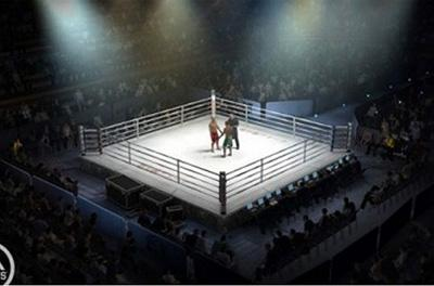 Три известных украинских боксера проведут бои в один вечер