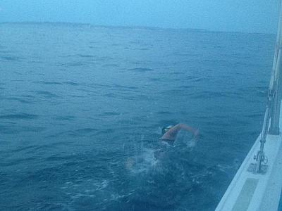 Украинская пловчиха не смогла преодолеть Ла-Манш