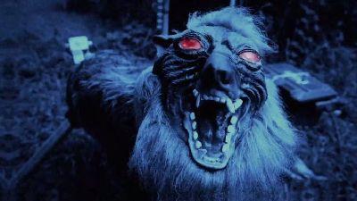 Ночной кошмар. Как робот-оборотень отгоняет диких зверей с полей в Японии