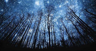 Украинцы смогут увидеть в вечернем небе удивительное явление