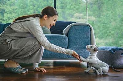 """Sony """"реинкарнировала"""" робота-собаку """"Aibo"""" (ВИДЕО)"""