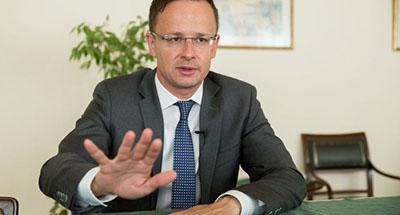 Сийярто потребовал немедленного наказания виновных за инцидент с флагом Венгрии в Берегово