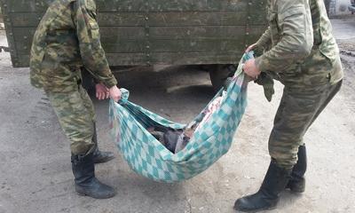 """""""Катастрофический показатель"""": озвучена серьезная проблема украинской армии"""