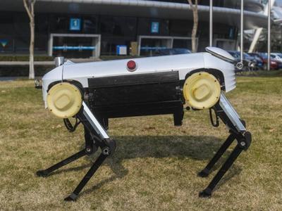 """В Китае """"склонировали"""" четвероногого робота Boston Dynamics"""