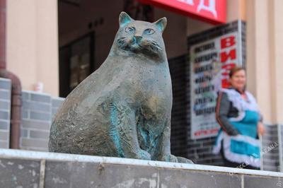 В Одессе установили памятник самой толстой кошке города