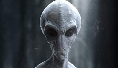Житель США случайно сфотографировал жуткого пришельца вместо своего сына