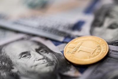 МВФ поможет Украине, когда доллар будет по 60 грн – экономист. ВИДЕО