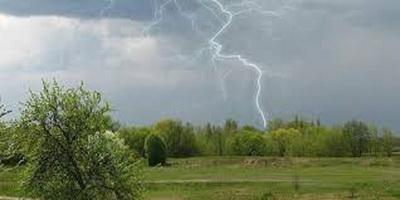 Грозы, ливни и шквальный ветер до 20 м/с: синоптики предупредили об опасной погоде