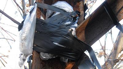 В ОРДО заявили о предотвращении «теракта»: появились детали