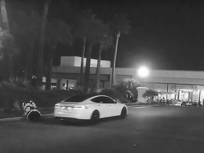 """В США Tesla на автопилоте сбила """"заблудившегося"""" российского робота (ВИДЕО)"""