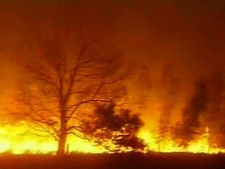 В Австралии вновь бушуют пожары. Огонь движется к Мельбурну